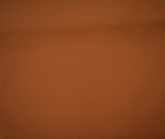 Elmosoft 54035 by Elmo | Natural leather