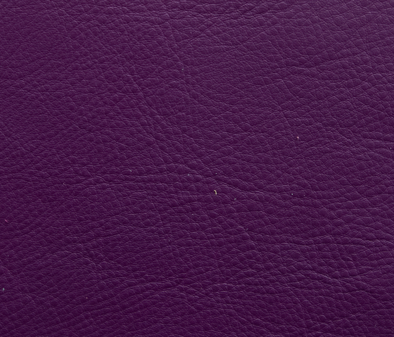 Elmosoft 57019 by Elmo | Natural leather