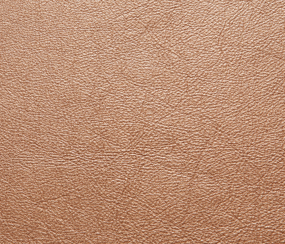 Elmotreasure 54099 by Elmo | Natural leather