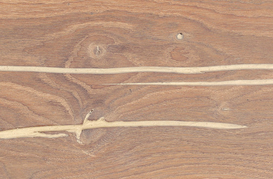 mafi Coral OAK Vulcano wide plank gold. brushed | white oil by mafi | Wood flooring