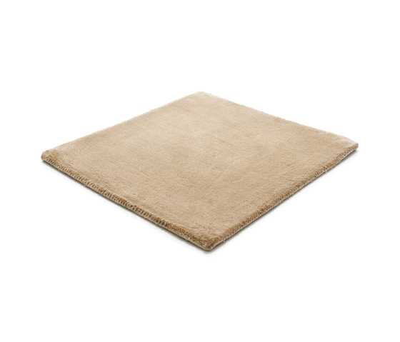 Studio NYC Polyester Edition beige grey by kymo | Rugs / Designer rugs