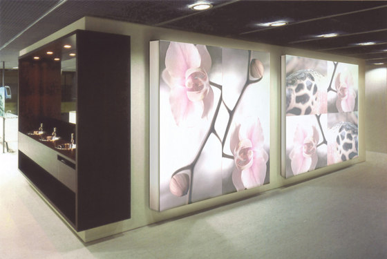 Orchid Meets Reptile by tela-design | Room divider systems