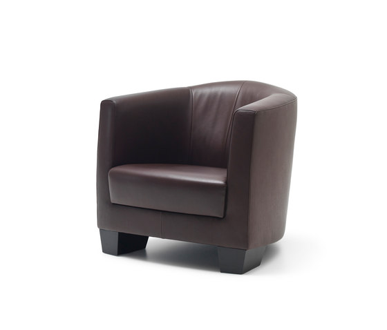 DS 2610 DiDo by de Sede | Lounge chairs