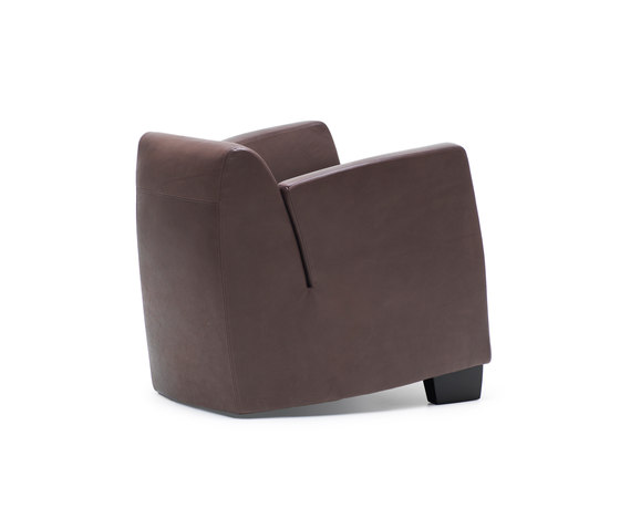 DS 2620 SeNa by de Sede | Lounge chairs