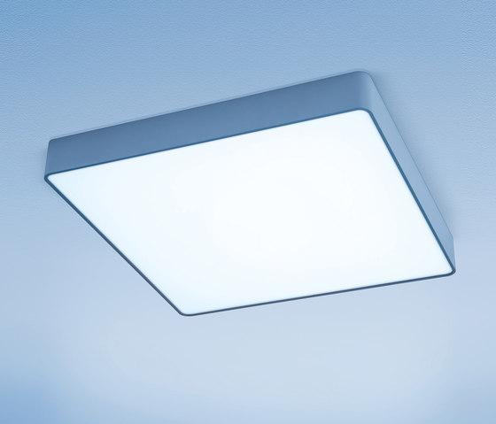 Caleo A2 by Lightnet | General lighting