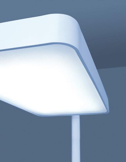Caleo S1/S2 by Lightnet   Task lights