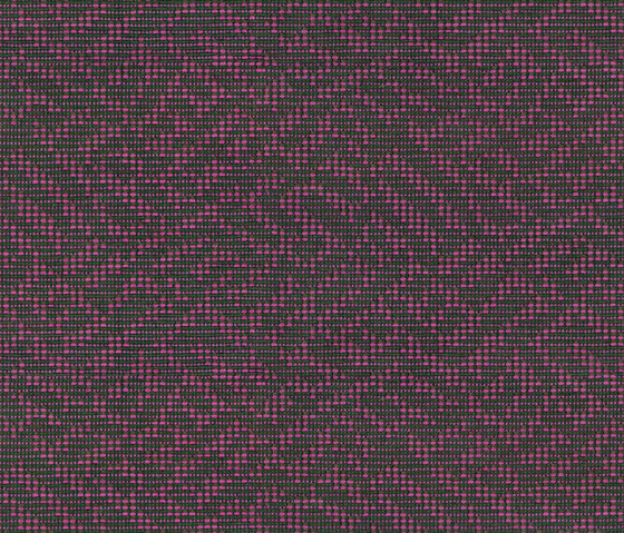 Unlimited 62361 100 by Saum & Viebahn | Fabrics