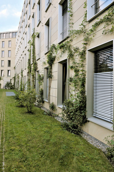 I-SYS | Green wall systems by Carl Stahl | Wire ropes