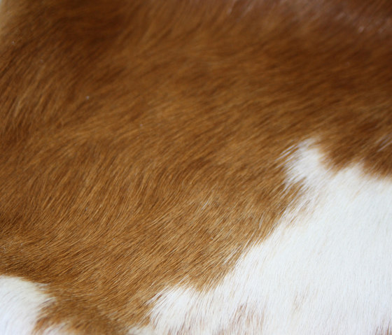 Cowhide by KURTH Manufaktur | Rugs / Designer rugs