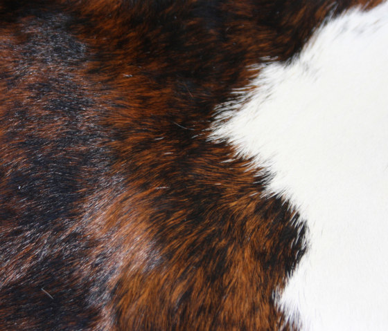 Cowhide by KURTH Manufaktur | Rugs
