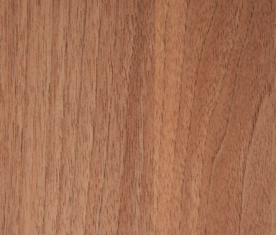 3M™ DI-NOC™ Architectural Finish FW-1023 Fine Wood by 3M | Decorative films