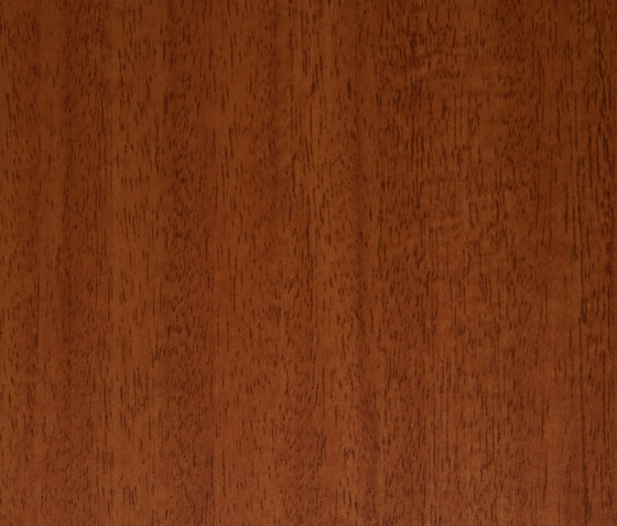3M™ DI-NOC™ Architectural Finish FW-1038 Fine Wood by 3M | Films