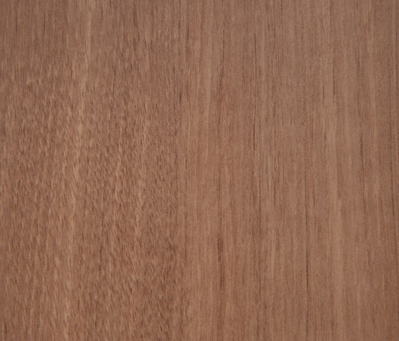 3M™ DI-NOC™ Architectural Finish FW-1122 Fine Wood by 3M | Decorative films