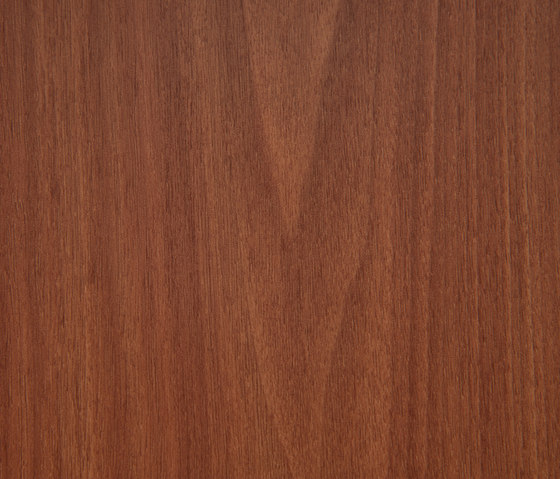 3M™ DI-NOC™ Architectural Finish FW-1331 Fine Wood by 3M | Decorative films