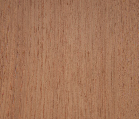3M™ DI-NOC™ Architectural Finish FW-1810 Fine Wood by 3M | Decorative films