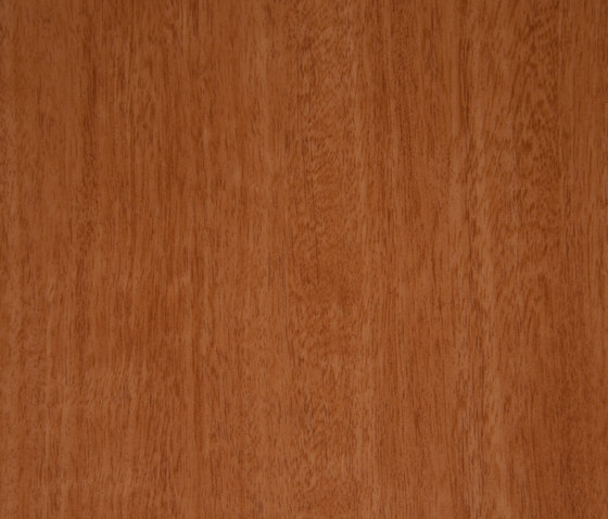 3M™ DI-NOC™ Architectural Finish FW-231 Fine Wood by 3M | Decorative films