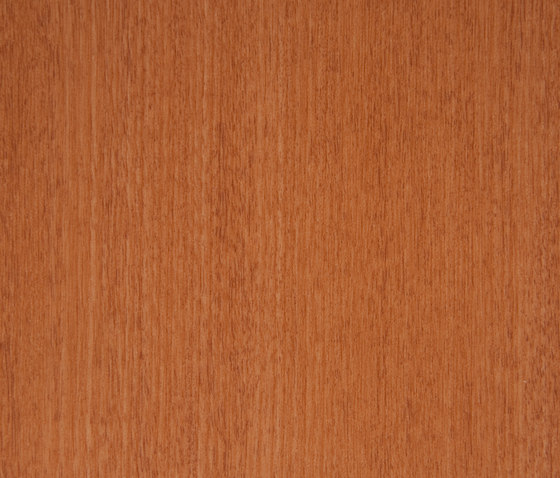 3M™ DI-NOC™ Architectural Finish FW-234 Fine Wood by 3M | Films