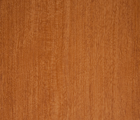 3M™ DI-NOC™ Architectural Finish FW-235 Fine Wood by 3M | Decorative films