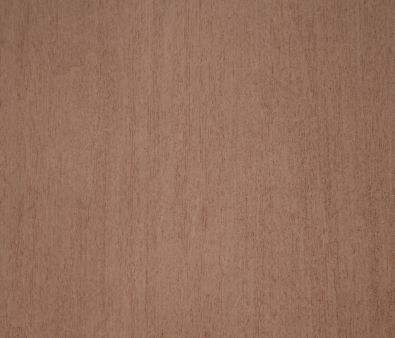 3M™ DI-NOC™ Architectural Finish FW-333 Fine Wood by 3M | Films