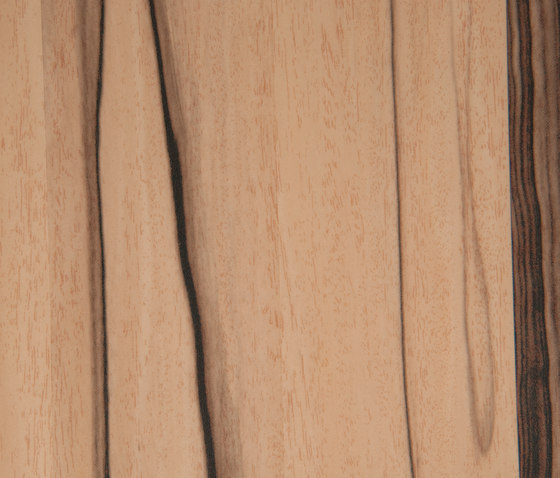 3M™ DI-NOC™ Architectural Finish FW-791 Fine Wood by 3M | Decorative films