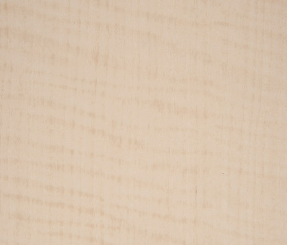 3M™ DI-NOC™ Architectural Finish FW-342 Fine Wood by 3M | Films