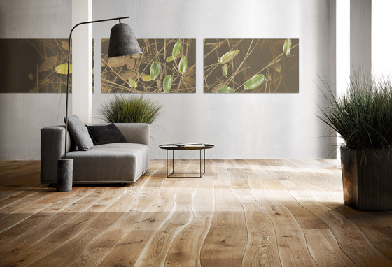 Natural Oak with sapwood brushed parquet by Bolefloor | Wood flooring