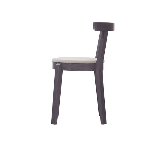 Punton Chair upholstered by TON | Restaurant chairs