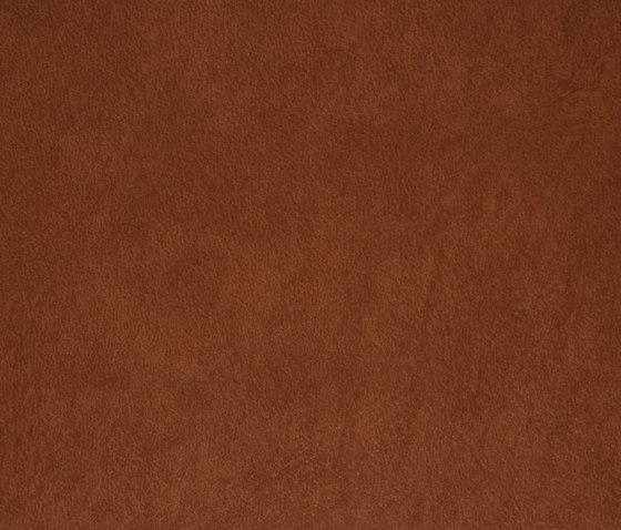 3M™ DI-NOC™ Architectural Finish LE-742 Leather de 3M | Láminas de plástico