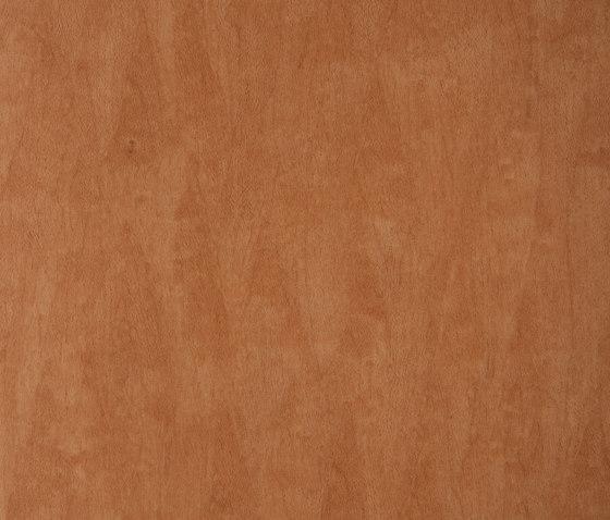 3M™ DI-NOC™ Architectural Finish WG-416 Wood Grain di 3M | Pellicole
