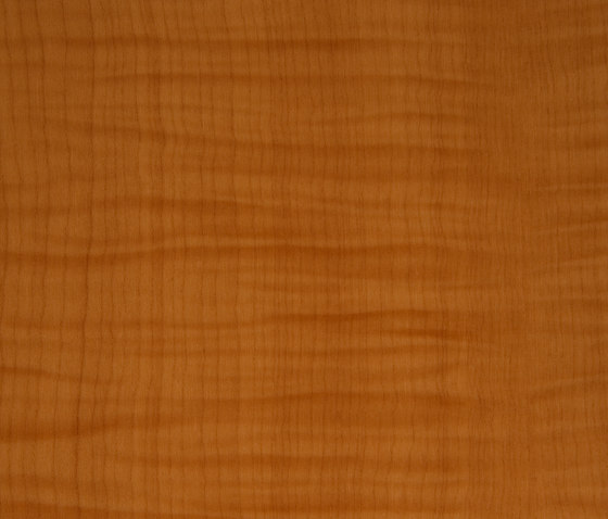3M™ DI-NOC™ Architectural Finish WG-709 Wood Grain di 3M | Pellicole