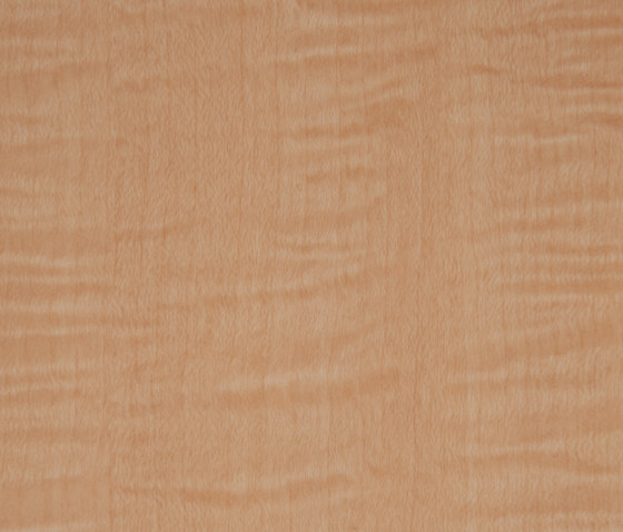 3M™ DI-NOC™ Architectural Finish WG-833 Wood Grain by 3M | Films