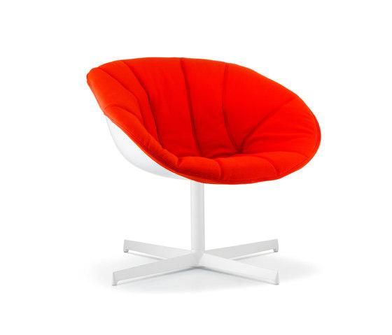 Gliss Lounge 360/3 by PEDRALI | Lounge chairs