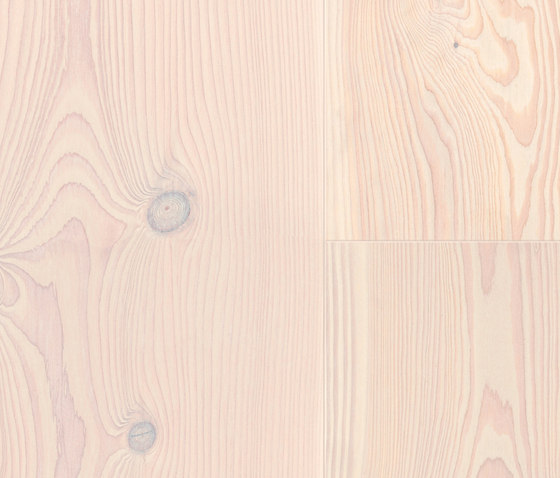 Softwood Douglas Fir white basic by Admonter | Wood flooring