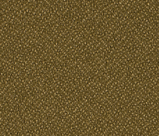 Crep 0025 by Carpet Concept | Fabrics