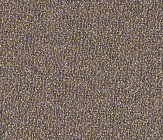 Crep 0055 by Carpet Concept | Fabrics