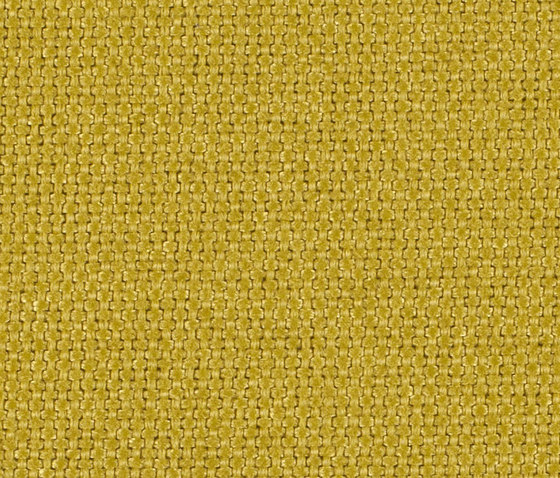Dubl 0023 by Carpet Concept | Fabrics