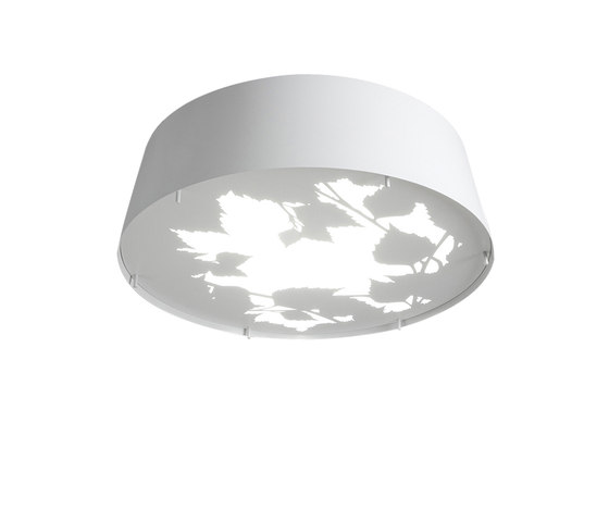 Glänta Mini ceiling by Blond Belysning | General lighting