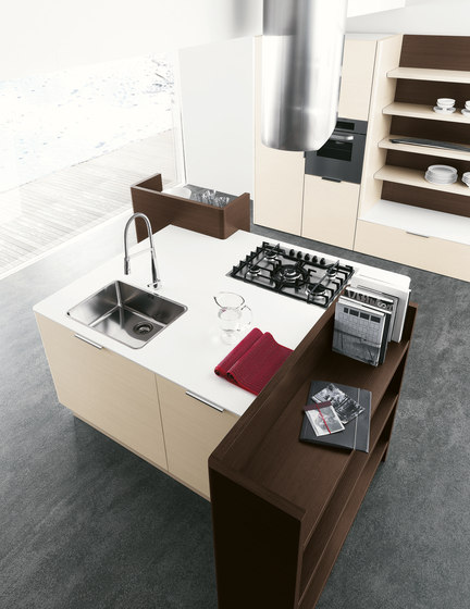 Meg   Composition 1 by Cesar Arredamenti   Fitted kitchens