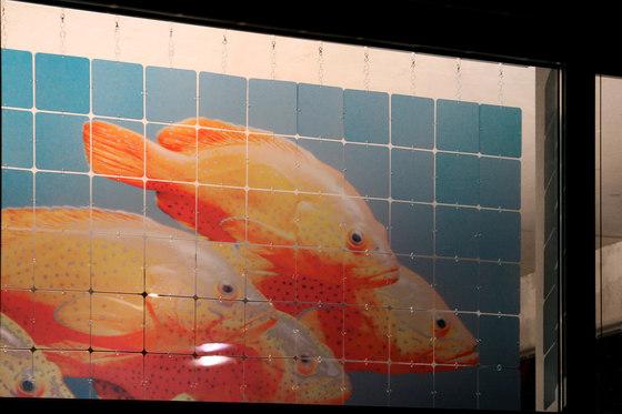 nolastar_image by Nola Star | Privacy screen