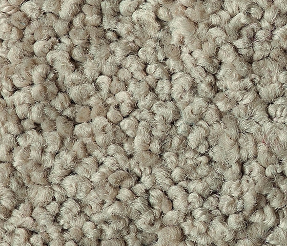 Glamour 2406 by OBJECT CARPET | Rugs / Designer rugs