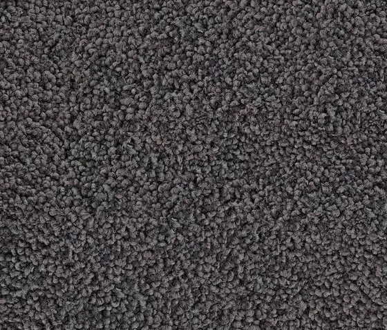 Glamour 2414 Graphit by OBJECT CARPET | Rugs