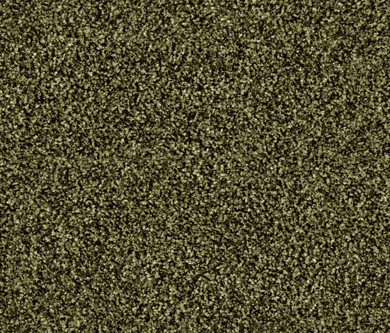 Glory 1510 Thymian by OBJECT CARPET | Rugs / Designer rugs