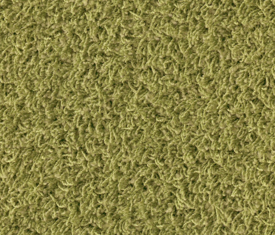 Poodle 1401 by OBJECT CARPET | Rugs / Designer rugs