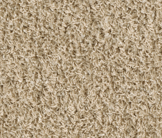 Poodle 1406 by OBJECT CARPET | Rugs / Designer rugs