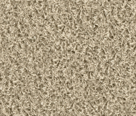Poodle 1406 Bisquit by OBJECT CARPET | Rugs