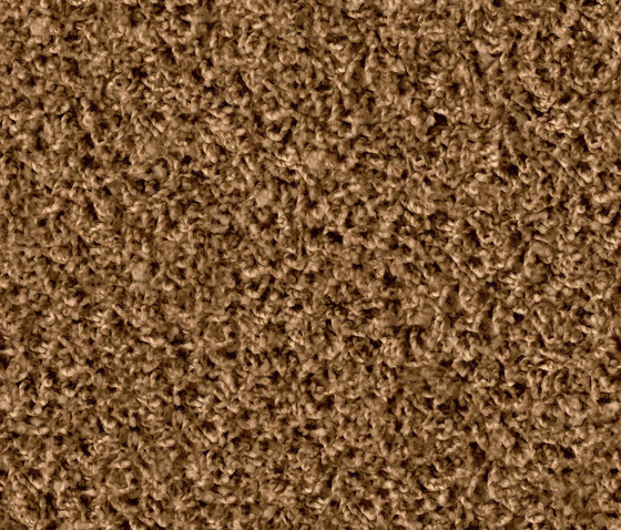 Poodle 1408 Cognac by OBJECT CARPET | Rugs