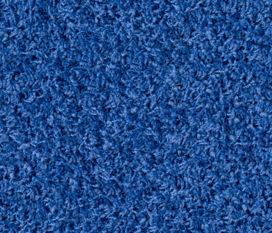 Poodle 1409 de OBJECT CARPET | Tapis / Tapis design