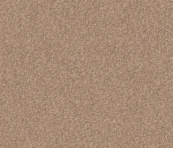 Silky Seal 1214 Crema by OBJECT CARPET | Rugs / Designer rugs