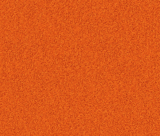 Silky Seal 1208 Papaya by OBJECT CARPET | Rugs