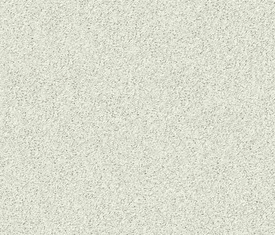 Silky Seal 1226 Eisbaer by OBJECT CARPET   Rugs / Designer rugs